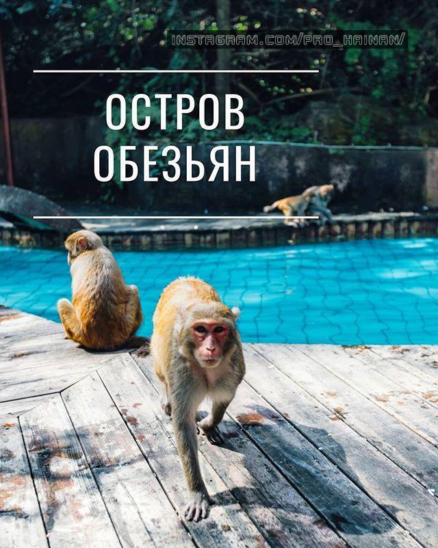 остров обезьян санья