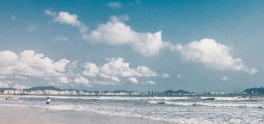 песчаные мошки санья